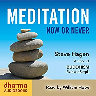Meditation Now or Never audiobook cover art