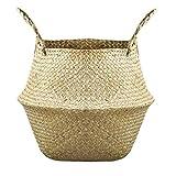 Aiyrchin Cesta de la Flor Plegable Seagrass Tejida Almacenamiento Tejido Paja Cesta de Almacenamiento se Utiliza para cestas Tienda Maceta y cestas de Picnic y lavandería comestibles 1PC