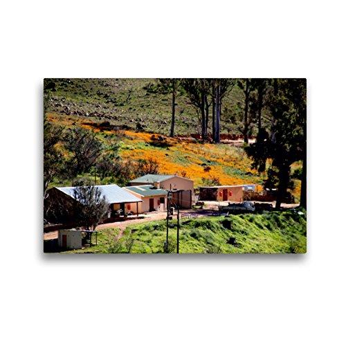 CALVENDO Premium Textil-Leinwand 45 x 30 cm Quer-Format Farm in den Cederberg Mountains, Südafrika, Leinwanddruck von Richard Walliser