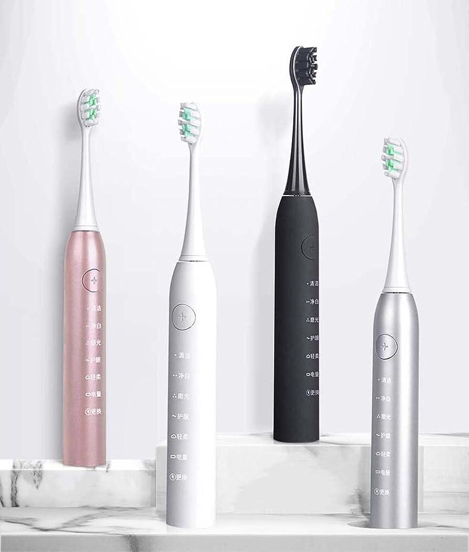 娯楽美人インポート電動歯ブラシ、トラベルソニック電動歯ブラシ、大人用スマート充電自動歯ブラシ、インテリジェントタイミング、誘導充電(カラー:シルバー)