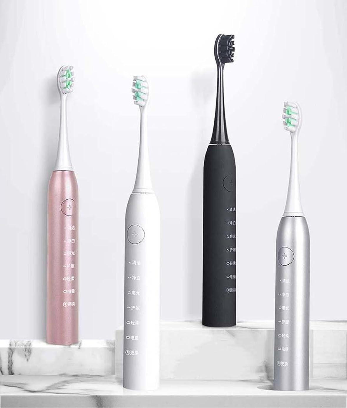 艦隊周囲歌う電動歯ブラシ、トラベルソニック電動歯ブラシ、大人用スマート充電自動歯ブラシ、インテリジェントタイミング、誘導充電(カラー:シルバー)