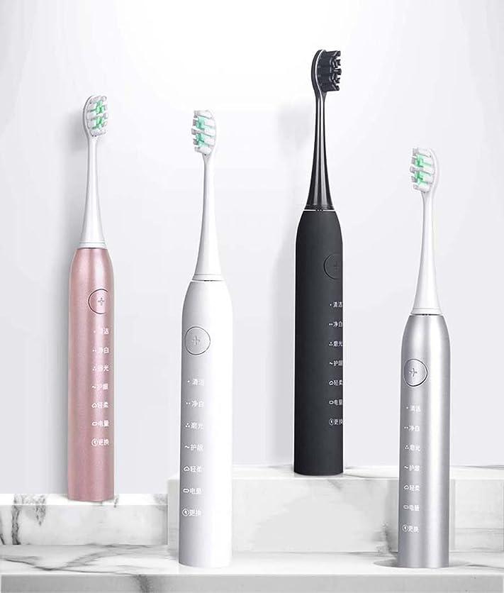 フック困惑した全能電動歯ブラシ、トラベルソニック電動歯ブラシ、大人用スマート充電自動歯ブラシ、インテリジェントタイミング、誘導充電(カラー:シルバー)
