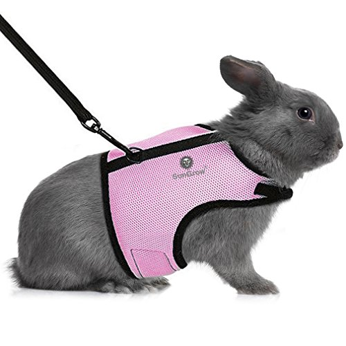 SunGrow Rabbit Harness and Leash, 6.4-8 Inches (Neck Circumference) 8-12.8 Inches (Bust) 4.9 Inches (Chest), Breathable Mesh Nylon Fabric, Adjustable with Touch Fasteners