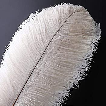 10pcs Natural Ostrich Feather Craft 14-16inch 35-40cm  Plume for Wedding Centerpieces Home Decoration  White