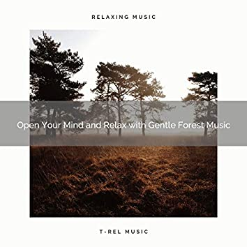 2021 New: Open Your Mind and Relax with Gentle Forest Music