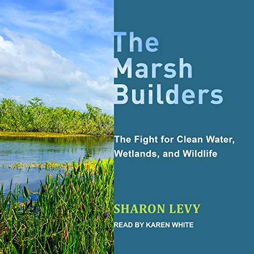 The Marsh Builders audiobook cover art