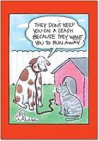 猫リーシュ誕生日ジョーク用紙カード 1 Birthday Card & Envelope (SKU:5027)