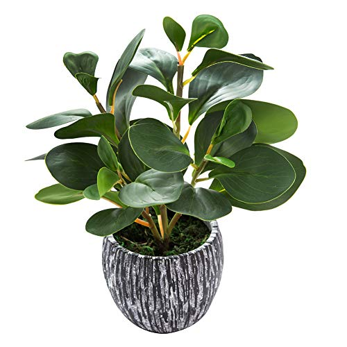 Artificial Potted Fiddle Plant