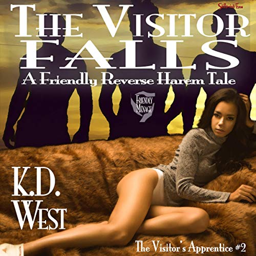The Visitor Falls audiobook cover art