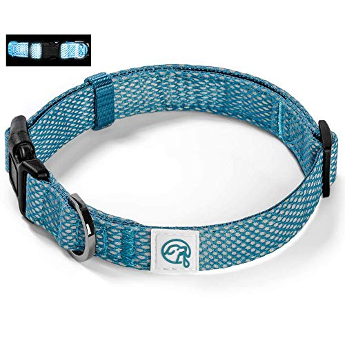 Embark Illuminate Reflective Dog Collar – Made with Reflective Material to Make Your Dog Collar Visible and Light at Night (Medium, Blue)