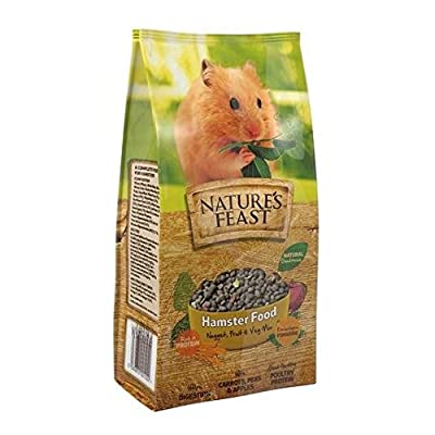 Nature's Feast Hamster Nugget, Fruit and Vegetable Food Mix 675g by Natures Feast