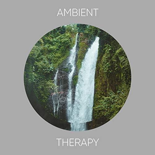 Spa Ambience & Meditation Music Club