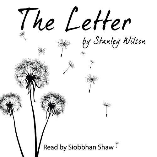 The Letter audiobook cover art
