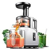 Extractor de zumo AMZCHEF Licuadora Prensado en Frio Licuadoras para verduras y frutas Máquina de Jugo Slow Juicer|Función Inversa/Motor Silencioso/cepillo limpieza/Taza de jugo Sin BPA 150W
