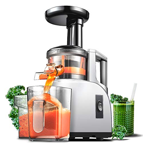 Best Masticating Juicer 2020.The Ultimate 20 Best Masticating Juicers Of 2019 Healthdy