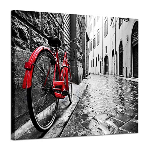 Artistic Path Cityscape Artwork Wall Decor: Bicycle Photographic Prints- Retro Vintage Red Bike in