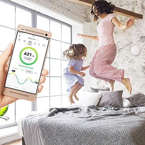 Green Power: The Best Smart Air Quality Monitor 13