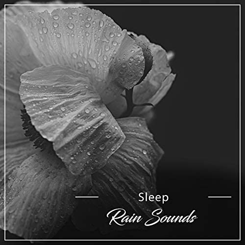Sounds of Nature White Noise for Mindfulness Meditation and Relaxation, Rain Sound Studio & Relaxing Music Therapy