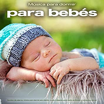 Música para dormir para bebés: Sonidos de pájaros, música para dormir para bebés, música relajante para sueño profundo y calma para dormir