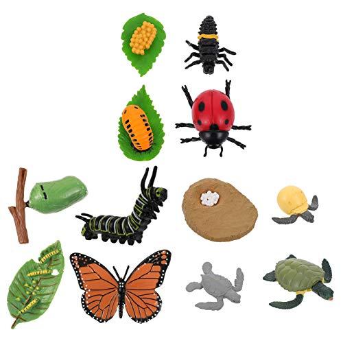 Angoily 12PCS Fazenda Animais Estatuetas de Ciclo de Vida da Borboleta Tartaruga E Figuras De Insetos Ciclo de Vida de Plástico Projeto Da Escola Figuras Toy Kit Educacional para Crianças
