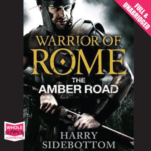 The Amber Road cover art
