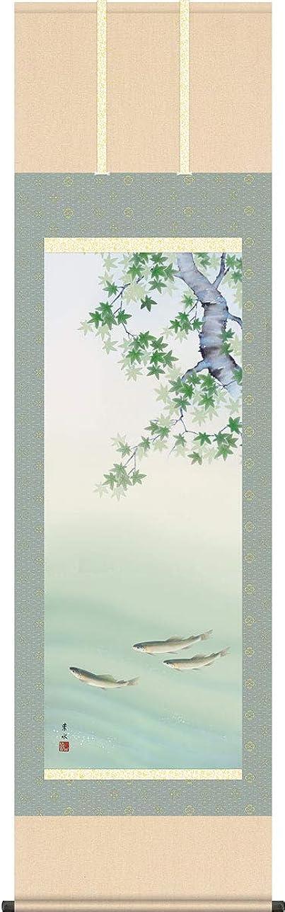 落ち着かない白鳥メディア掛軸(掛け軸) 四季彩艶 楓に鮎 緒方葉水作 尺五立 約横54.5cm×縦190cm 結納屋さん.com g4602