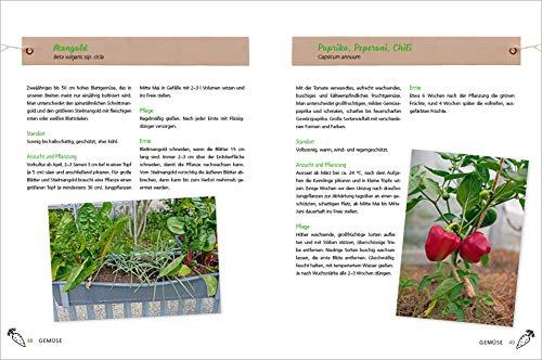 Alles Bio vom Balkon. Obst, Gemüse und Kräuter selber ziehen.: Große Ernten auf kleinster Fläche mit den richtigen Sorten und Pflanzgefäßen, ... Alles für den nachhaltigen Naschbalkon - 4
