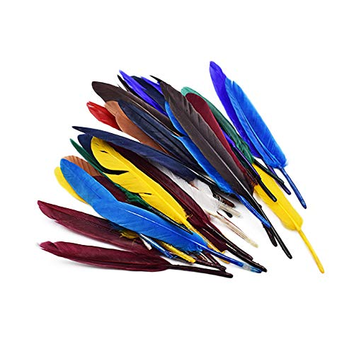 Fliyeong Federn schöne Feder Farbe Federn Feder Dekoration handgefertigte Feder für Studenten DIY handgefertigte Projekte 50 Stücke bunt