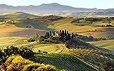 1500 Piezas Cjdeng Rompecabezas de cartón Grande Toscana Pradera imágenes de Belleza Rompecabezas Juegos educativos Juguetes para niños 87x57cm