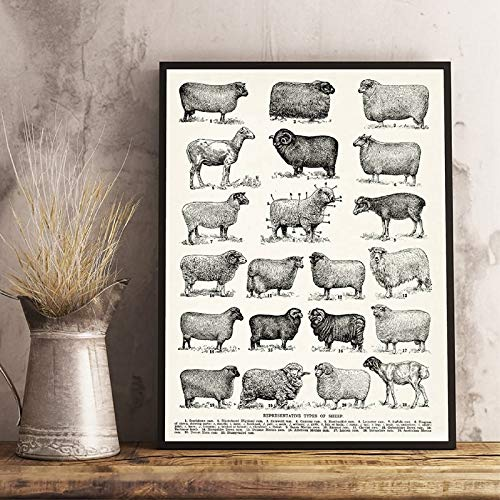 Sanzangtang Wooncultuur, canvasdruk, schilderijen, veelvoud aan schapen, wandkunst, retroposter, modulaire moderne Scandinavische stijl, afbeelding van de woonkamer zonder lijst