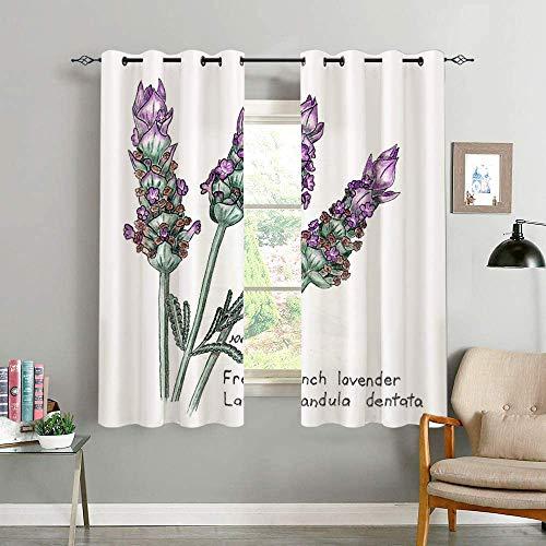 REFINE Verdunkelungsvorhange,French Lavender Lavandula Dentata Botanical Drawing In Colored Pencil,Wohnzimmer,Schlafzimmer,Vorhang,Familienleben,Dekoration