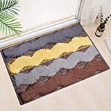 Indoor Doormat Front Door Rug, Absorbent Machine Washable Inside Door Mat, Non Slip Low-Profile Entrance Rug for Entry, Back Door