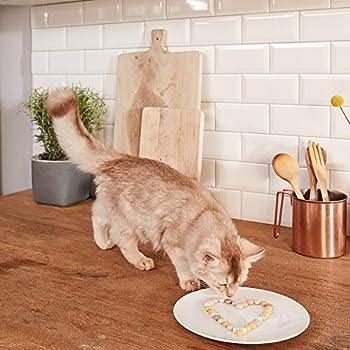 GimCat Rollis, friandises au fromage - Snack pour chats riche en vitamines au véritable fromage à pâte dure - Sans sucre ajouté ni céréales - 1 boîte (1 x 200g)