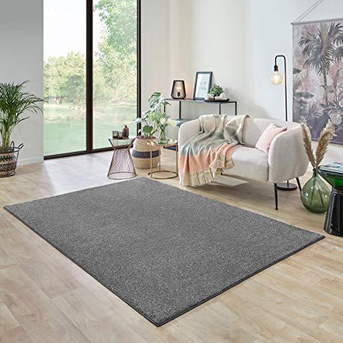 Carpet Studio Ohio Tappeto Salotto 160x230cm, Tappeti Soggiorno per Sala de Pranzo, Salotto & Camera da Letto, Facile da Pulire, Superficie Morbida, Pelo Corto - Platino/Grigio