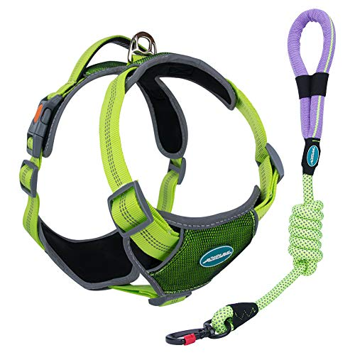 ThinkPet Upgraded Comfortable Dog Harness - Full Adjustable Reflective Vest Harness with Control Handle, Neoprene Padded Dog Vest, Unique Design Outdoor Nylon Harness L Green Harness Leash Set