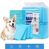 SJWR Adiestramiento de Mascotas Almohadilla de incontinencia urinaria pañal casa de Cachorros Alfombra de Entrenamiento para Mascotas jóvenes, Mascotas Adultas,40pieces60*60cm