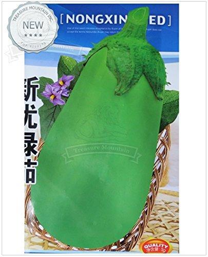 1 Original Pack, 500 graines / paquet, comestibles légumes Big chinois vert Aubergine