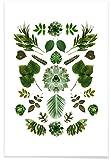 JUNIQE® Blätter & Pflanzen Poster 20x30cm - Design