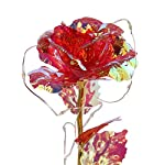 beauty and the beast rose colorful flower rose valentines day gift for women galaxy rose with led light in glass dome on wooden base, forever rose for her wedding anniversary birthday party home decor