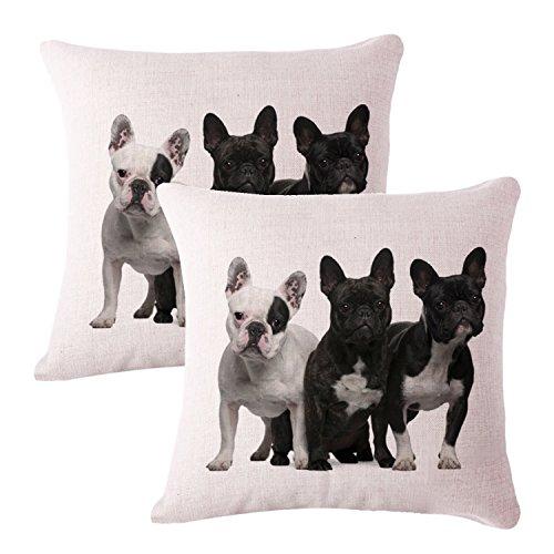 Queenie®–2pieza Perro raza decorativa Funda de almohada cojín para sofá funda de almohada 18x 18(45x 45cm), diseño de flores, juego de 2