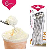 VISMOORE Drinking Spoon Straws, Reusable Metal Stainless Steel Straw Spoon Stirrer with Cleaning Brush for Milkshake, Smoothies, Set of 6