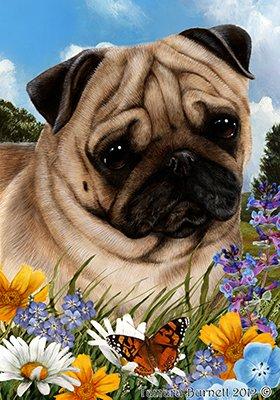 Best of Breed Carlin fauve - pavillons de jardin de fleurs d'été