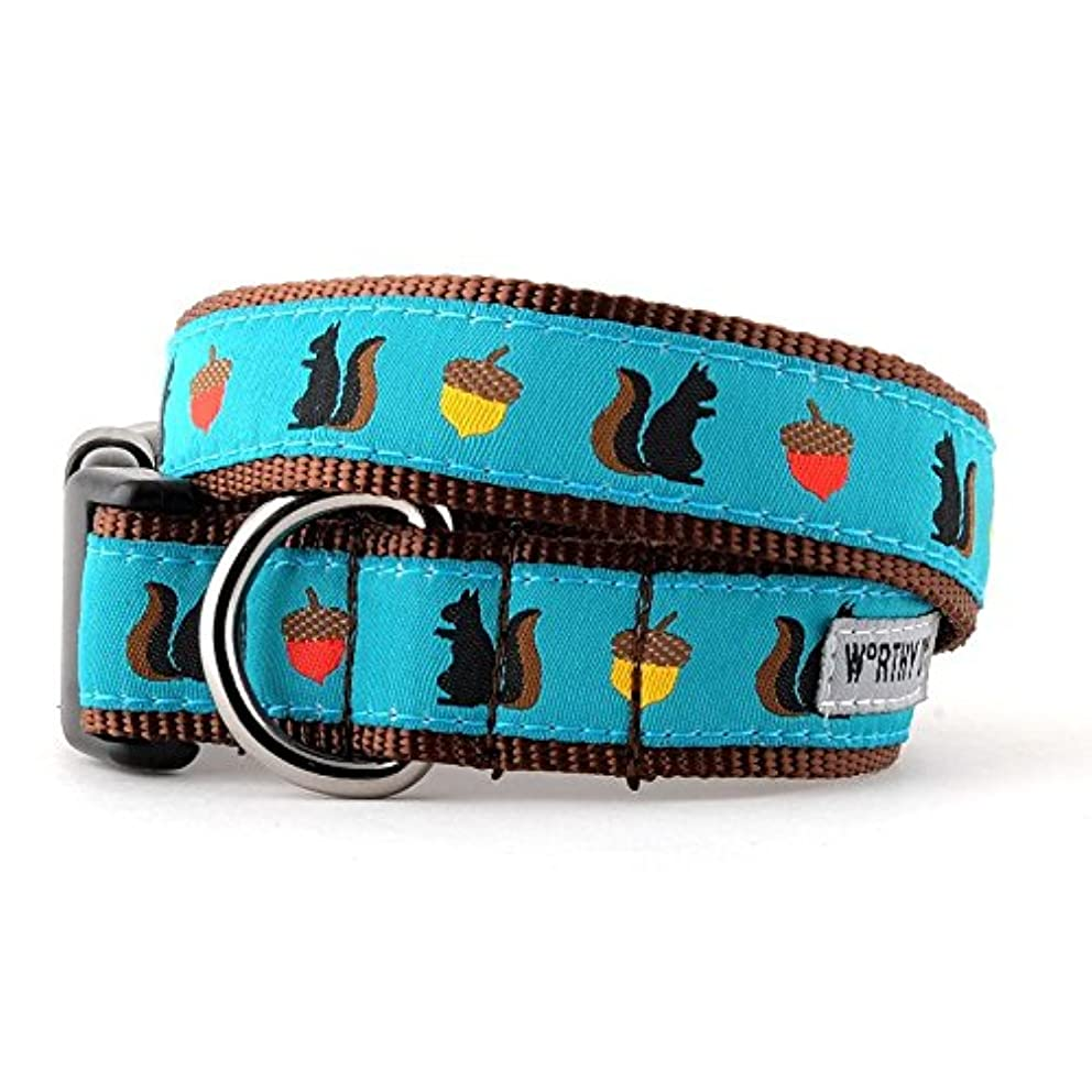 The Worthy Dog   Squirrelly, Squirrel and Acorn  Adjustable Designer Pet Dog Collar , Teal, M