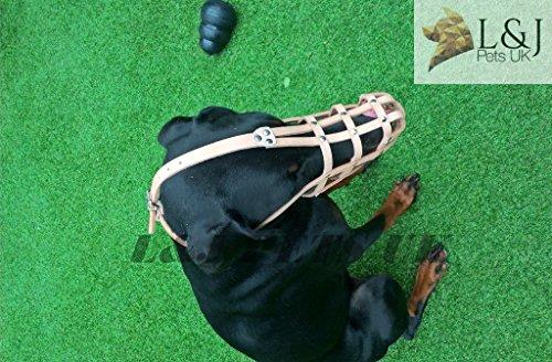Licht Leder Maulkorb für Hunde für Dobermann, Malinois