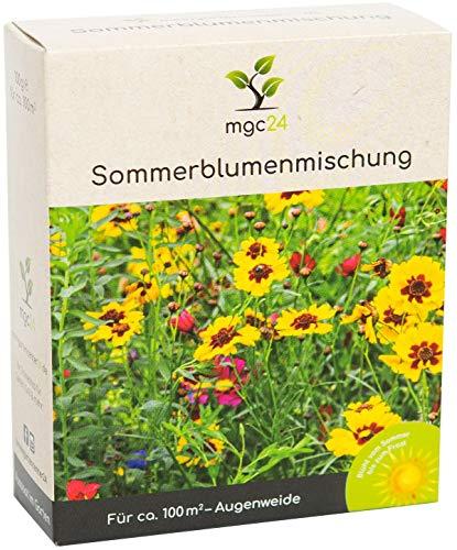 mgc24® Sommerblumenmischung - Blumenmischung für nützliche Insekten ein- & mehrjährig 100g für 100m²