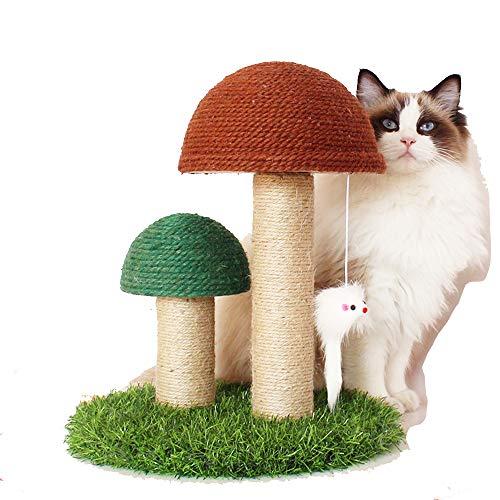Katzenspielzeug Katzenkratzbaum, Katzenbetten mit Katzengras für Indoor-Katzen,...