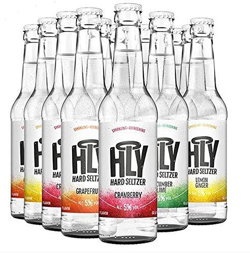 Holy Hard Seltzer - alkoholisiertes aromatisiertes Sprudelwasser 5% vol. (Grapefruit (6x0,33l))