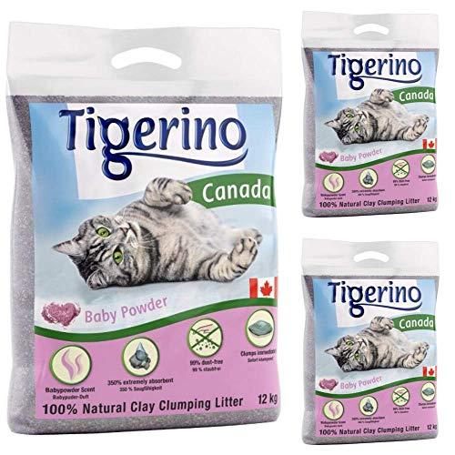 Tigerino Canada Katzenstreu, klumpend, Babypuderduft, 3 x 12 kg, parfümiert, antibakteriell, Einweg- und hypoallergenes Hygienestreu mit Geruchskontrolle