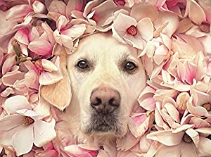 1000 Piece Puzzle -Jigsaw Puzzle Unique Dog &Flower – 1000 Piece Puzzles for Adults- Gift Idea for Anniversary,Mother's Day,Family Game,Friends 50X70CM