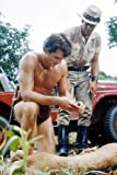 Poster Ron Ely Tarzan Barechested Kneeling by Lion With